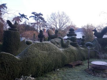 topiary in garden cold