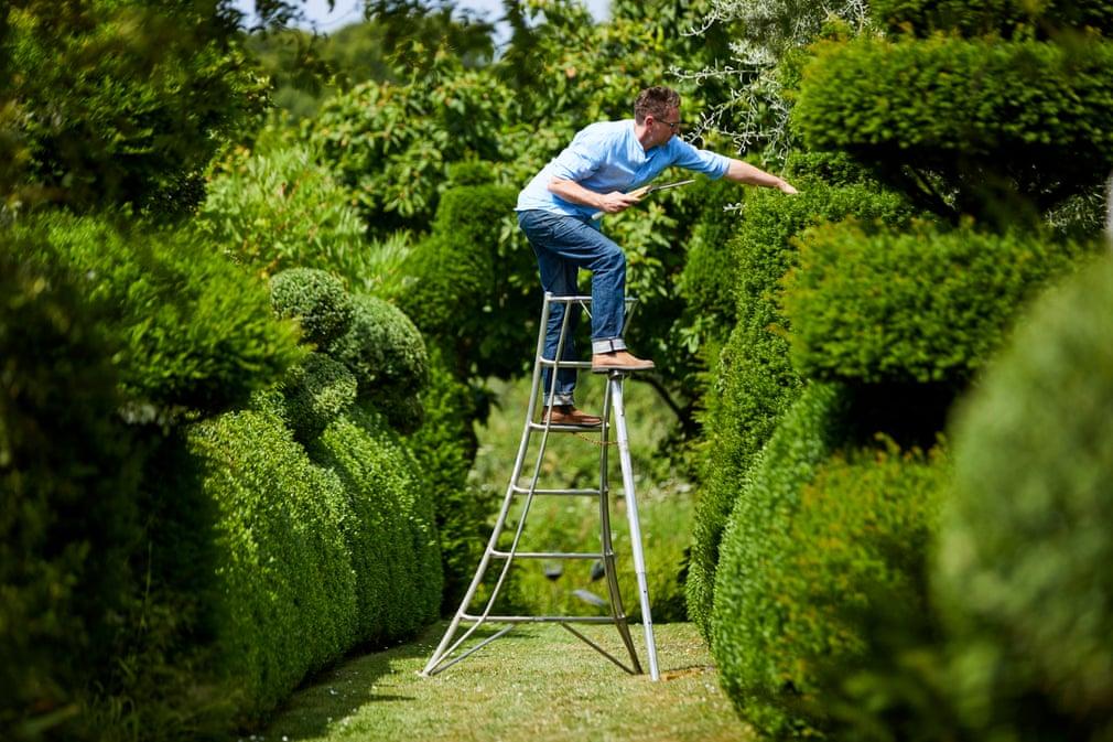 Darren Topiary