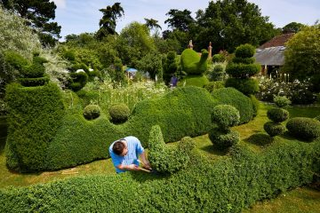 Darren Guardian Topiary
