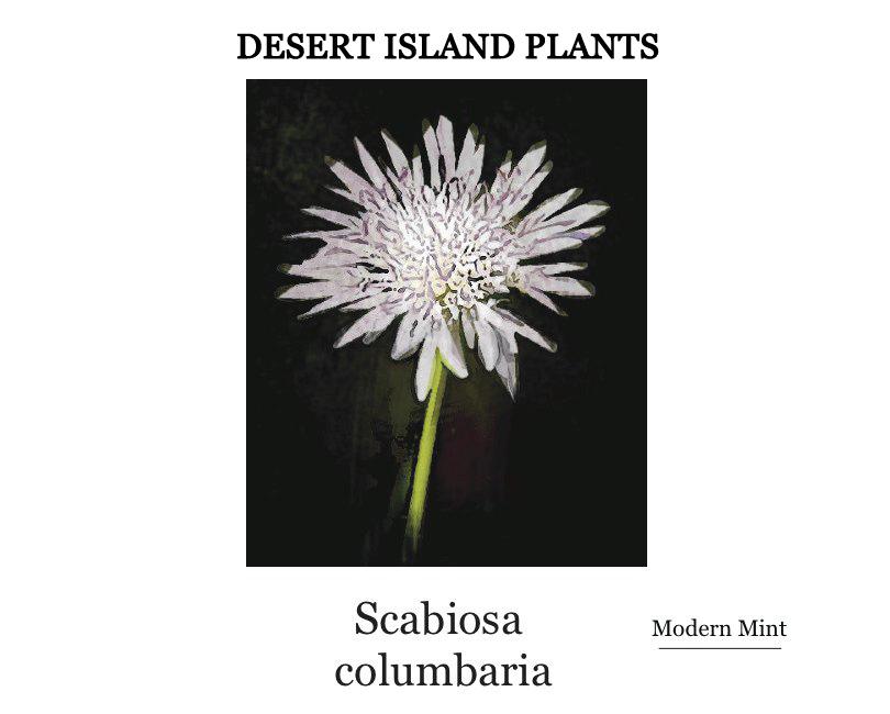 Desert Island Plants