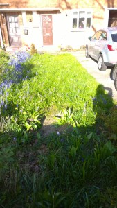 The front garden, initial visit