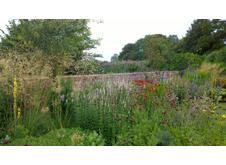 Contemporary Planting Portfolio Image