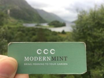 Modern Mint Scotland