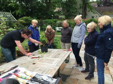 Topiary Teaching