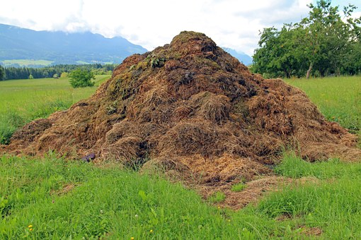 big compost heap