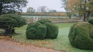 organic topiary blob autumn