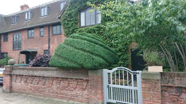topiary swirl
